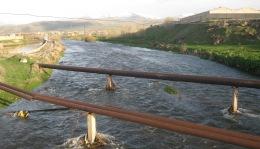 Ու՞մ ականջներն են երևում Արգիճի գետի ալիքներում