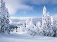 Ձմեռն իր իրավունքների մեջ կլինի դեկտեմբերին.Սպասվում է ցուրտ եղանակ