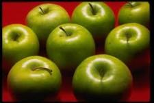 Խնձորային անձրև Անգլիայում