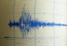4,1 մագնիտուդով երկրաշարժ  Վանում