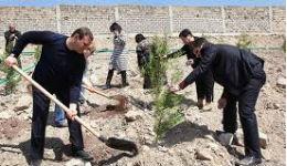 Քարոզարշավի ութերորդ օրը. Գոնե ծառ տնկեք