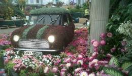 Ծաղիկների ամենամյա շոու՝ Լոնդոնում (լուսանկարներ)