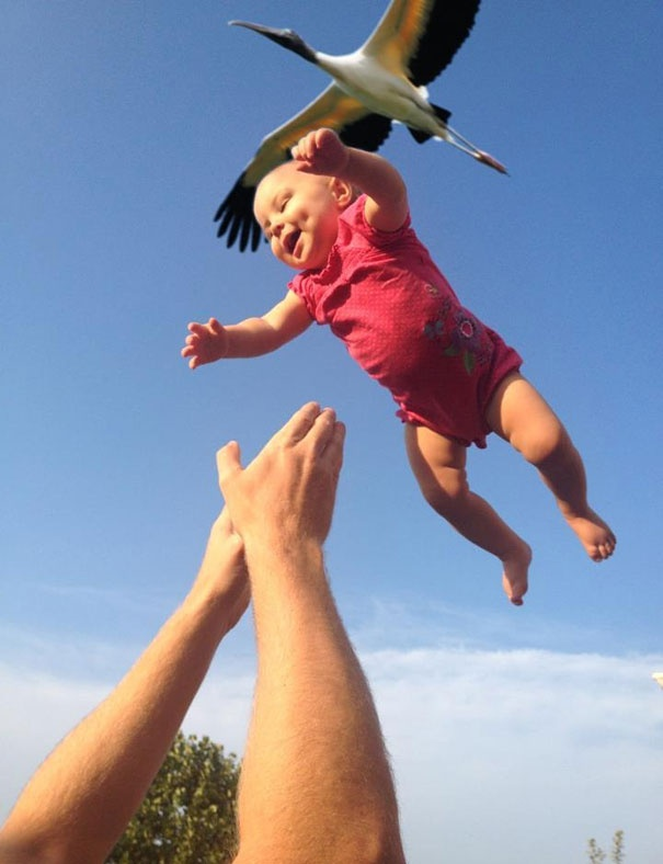 7458260-R3L8T8D-605-perfectly-timed-photos-91