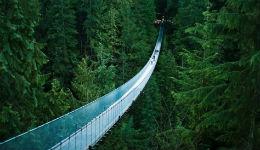 17 անհավանական կամուրջներ