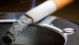 «Ծխելու եմ: Այս իշխանությունների ինադու օրը 4 տուփ եմ ծխելու».«օրթաղ» գործ են բռնել «Ֆիլիպ Մորիսի» հե՞տ