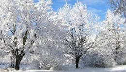 Հայաստանն անցնում է ձմեռային ցուրտ ցիկլոնների ազդեցության տակ.օդի ջերմաստիճանը կնվազի 8-10 աստիճանով